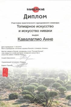 Диплом участника практического однодневного семинара Топиарное искусство и искусство ниваки_11.05.19